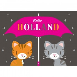 POSTCARD HALLO HOLLAND CATS MODERN