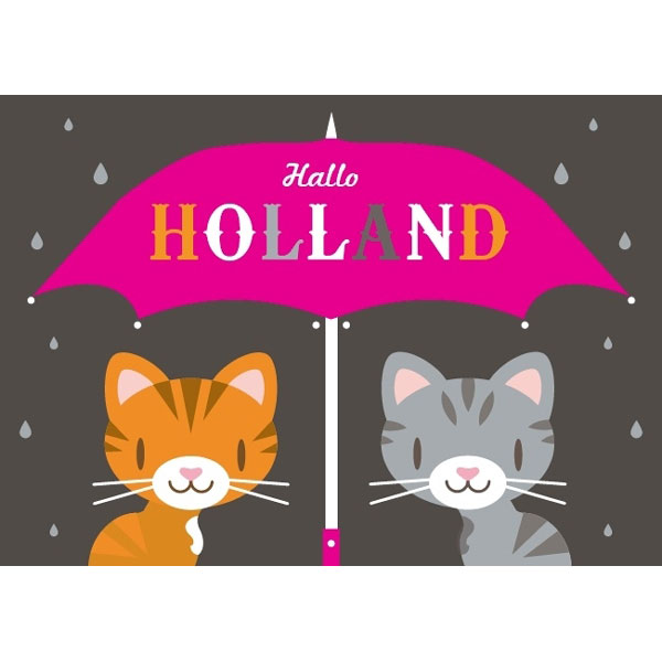 postcard hallo holland cats modern postcards and calendars