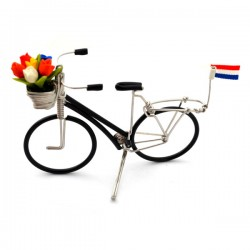 BICICLE WIRE TULIPS DUTCH FLAG