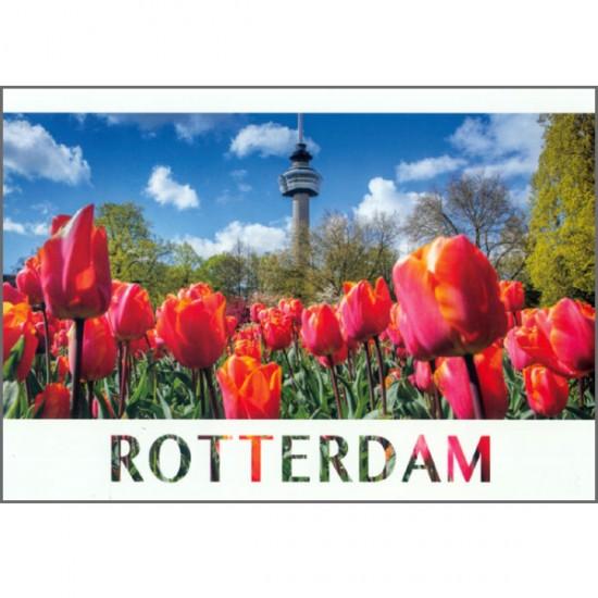 Ansichtkaart foto rotterdam euromast tulpen antonyzs vk10