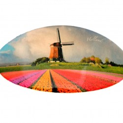 HAIRPIN WINDMILL TULIP FIELD HOLLAND