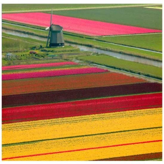 Ansichtkaart holland 15 x 15 cm - 2794