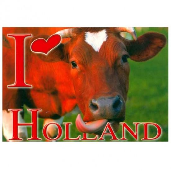 Ansichtkaart holland a6 - 24627