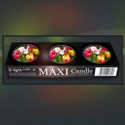 D-light tea lights maxi with Tulips