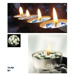 D-light tea lights white tulip