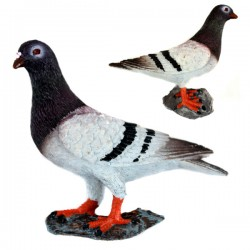 FRIDGE MAGNET PIGEON