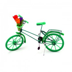 MINIATURE BICYCLE TULIPS GREEN