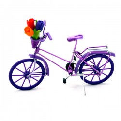 MINIATURE BICYCLE TULIPS PURPLE