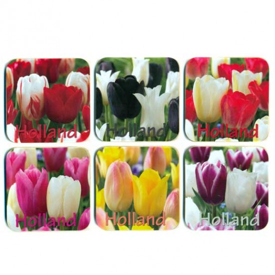 COASTERS CORK SET 6 PCS HOLLAND TULIPS ASSORTI